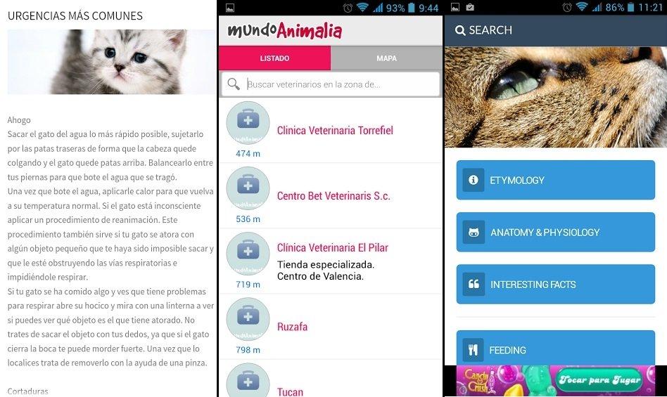 Aplicaciones Android para los amantes de los gatos