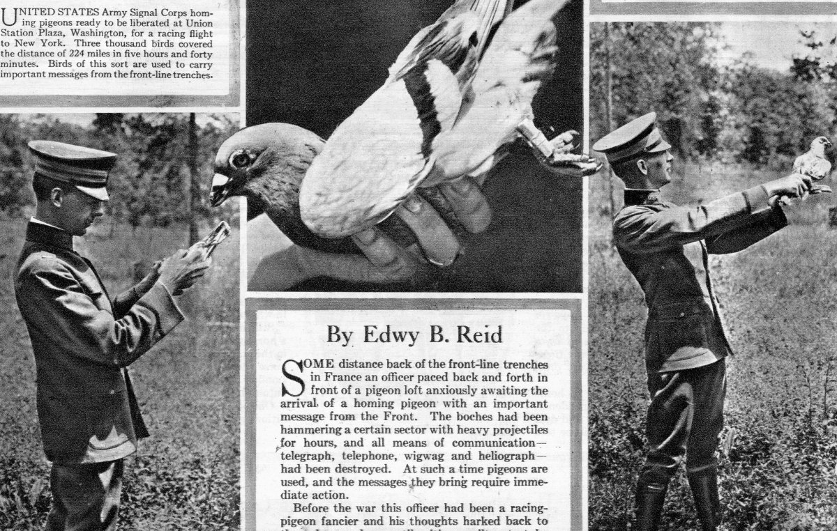 ASí se enviaban las palomas mensajeras en la Guerra francoprusiana