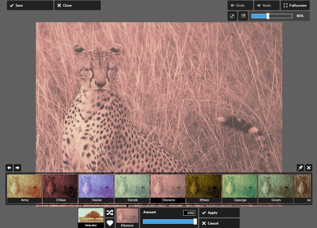 Con Pixlr puedes aplicar filtros y efectos y ver los resultados en tiempo real