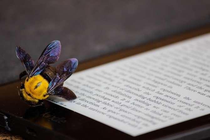 eBook, la nueva literatura