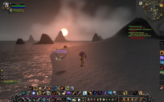 Gameplay de World of Warcraft