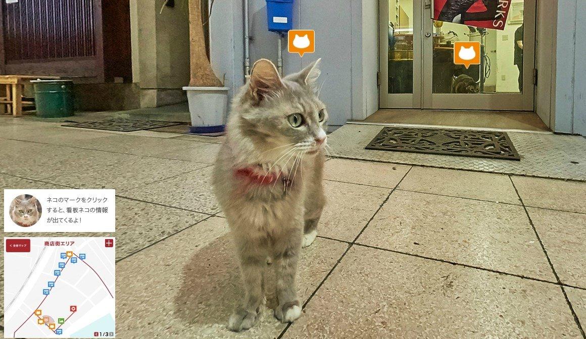 Gatete por las calles de Onomichi