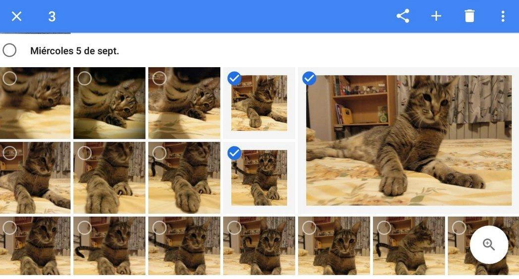 Google Fotos es una gran opción para hacer copias de seguridad de nuestras fotos y guardarlas en la