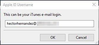 Introducción del correo electrónico del ID de Apple