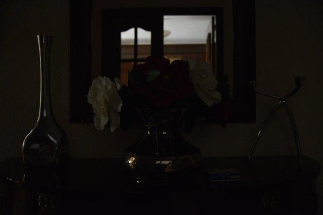 La foto sale oscura porque no hay luz, pero el ISO permite que veamos los detalles (f3.5, 1/60, ISO