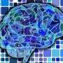Apps para entrenar el cerebro y la memoria. ¿De verdad funcionan?