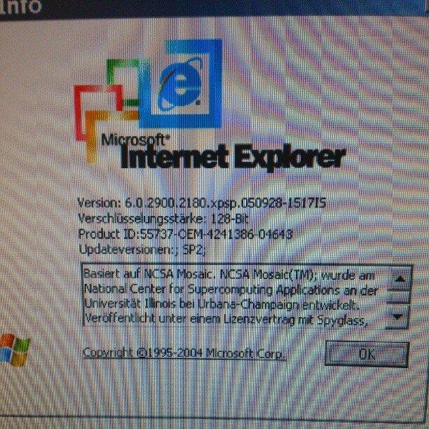 Pantalla de información de Internet Explorer 6