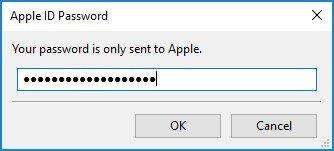 Pon la clave específica en la ventana de Cydia Impactor