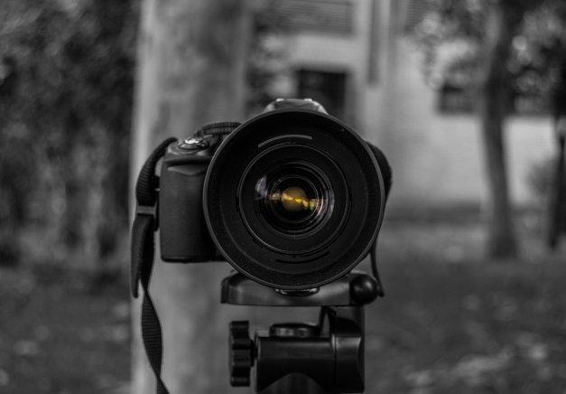 Cómo organizar fotos empleando herramientas online
