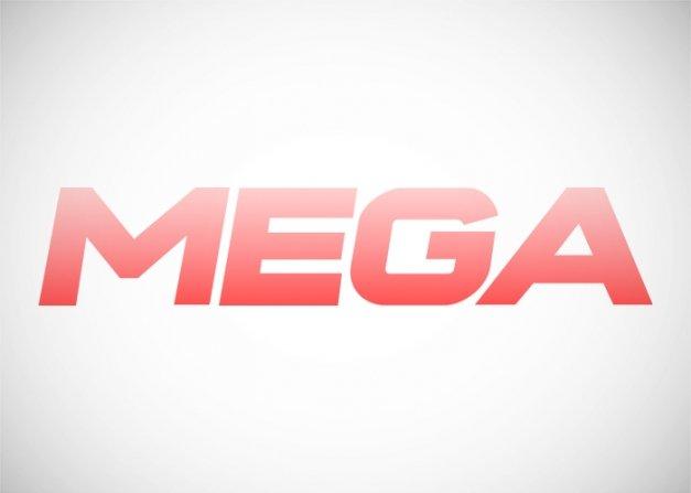 Qué es y cómo usar MegaDownloader
