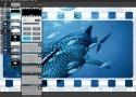 Autodesk lanza su editor de imágenes Pixlr para Windows y Mac - imagen 7