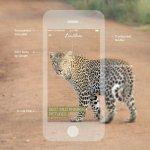 Crea apps para tu negocio con diseño y estilo gracias a GoodBarber