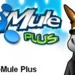 Ahorra espacio en tu disco duro cuando utilices eMule