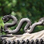 China perseguirá las conexiones VPN