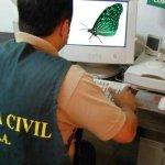 Detenidos los creadores del troyano utilizado por Mariposa