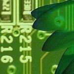 Green Telecom: el sector en busca de su agenda verde