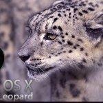 Mac OS X Snow Leopard, aún mejor
