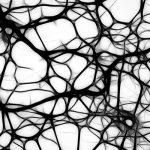 Los enfermos de ELA podrán escribir gracias a implantes neuronales