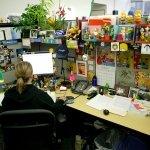 11 habilidades a desarrollar si quieres trabajar en Google