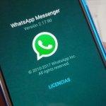 No, WhatsApp no incluirá anuncios en tus chats
