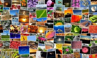 Programas para organizar tus fotos en el móvil y el PC