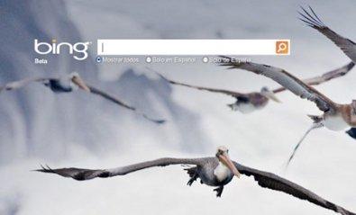 Bing incorpora más opciones sociales en su barra lateral