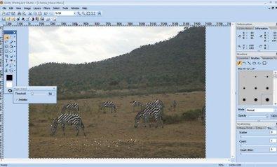 Suite creativa multimedia Ability Graphics