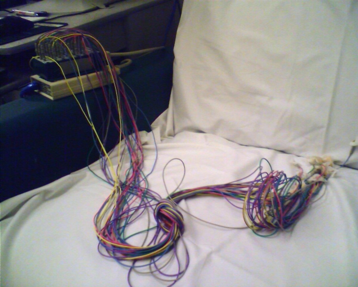 Un ejemplo de un EEG con el que Torchin intenta duplicar su mente