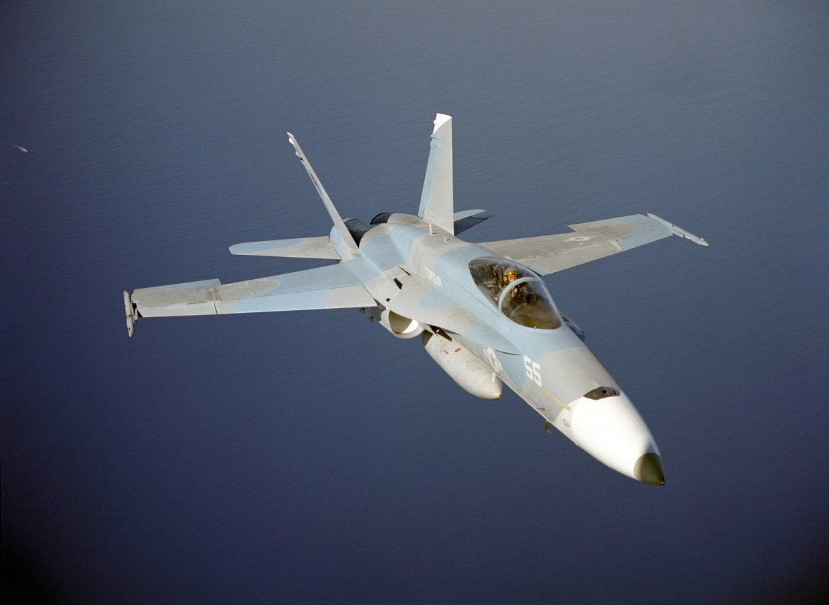 Un F/A-18 Hornet ha sido uno de los objetos subastados más llamativos