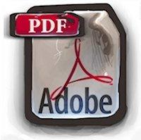 Adobe Reader bugs
