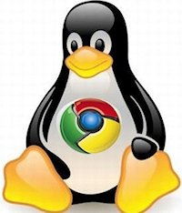 Chrome Linux