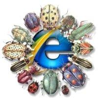 Bug Internet Explorer