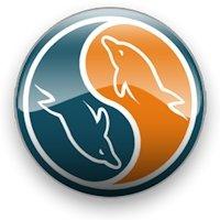 Administrer MySQL sous Linux