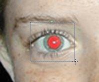 Ojos rojos 13