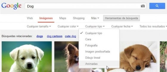Nuevo opción de búsqueda de imágenes animadas