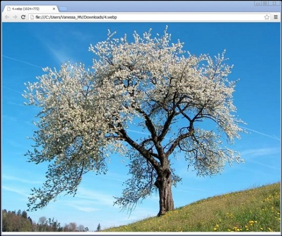 Ver WebP en Chrome