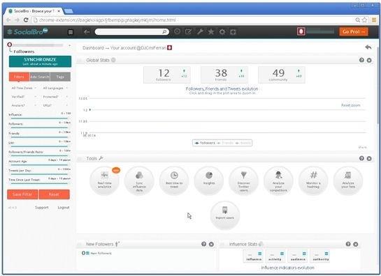 Interfaz del programa SocialBro