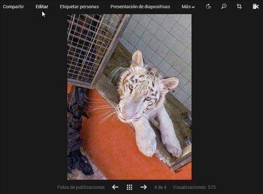 Nueva opción editar imagen en Google Plus