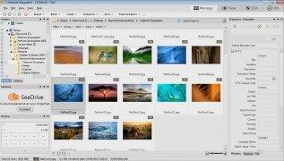 ACDSee imagen 8 Thumbnail