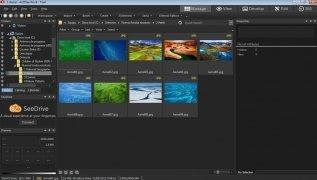 ACDSee Pro imagen 2 Thumbnail