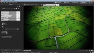 ACDSee Pro  8.0.262 imagen 4