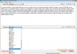 Ace Translator immagine 3 Thumbnail