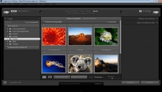 Adobe Photoshop Lightroom imagen 2 Thumbnail