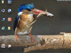 Animosaix imagen 1 Thumbnail
