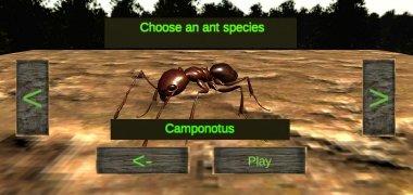 Ant Simulation 3D imagen 7 Thumbnail