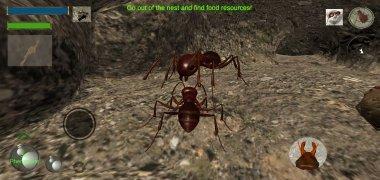 Ant Simulation 3D imagen 8 Thumbnail