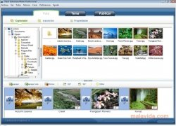 ANVSOFT Flash Slideshow Maker bild 1 Thumbnail