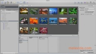 Aperture imagen 4 Thumbnail