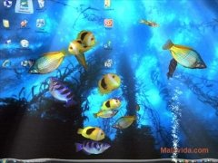 Aqua 3D Screensaver image 2 Thumbnail