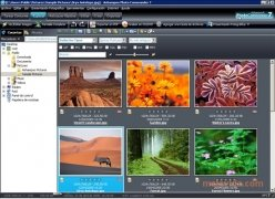 Ashampoo Photo Commander image 1 Thumbnail